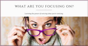 What are you focusing on - Cyn Hannah